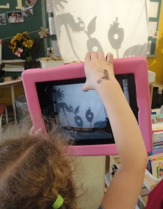 Our literacy connection for the start of this inquiry was The Very Hungry Caterpillar by Eric Carle. Here, a student records a shadow-puppet retelling of the story on the iPad.