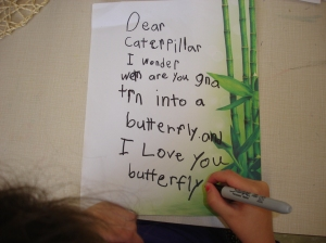 Writing letters to our butterflies while we wait for them to emerge from their chrysalises.