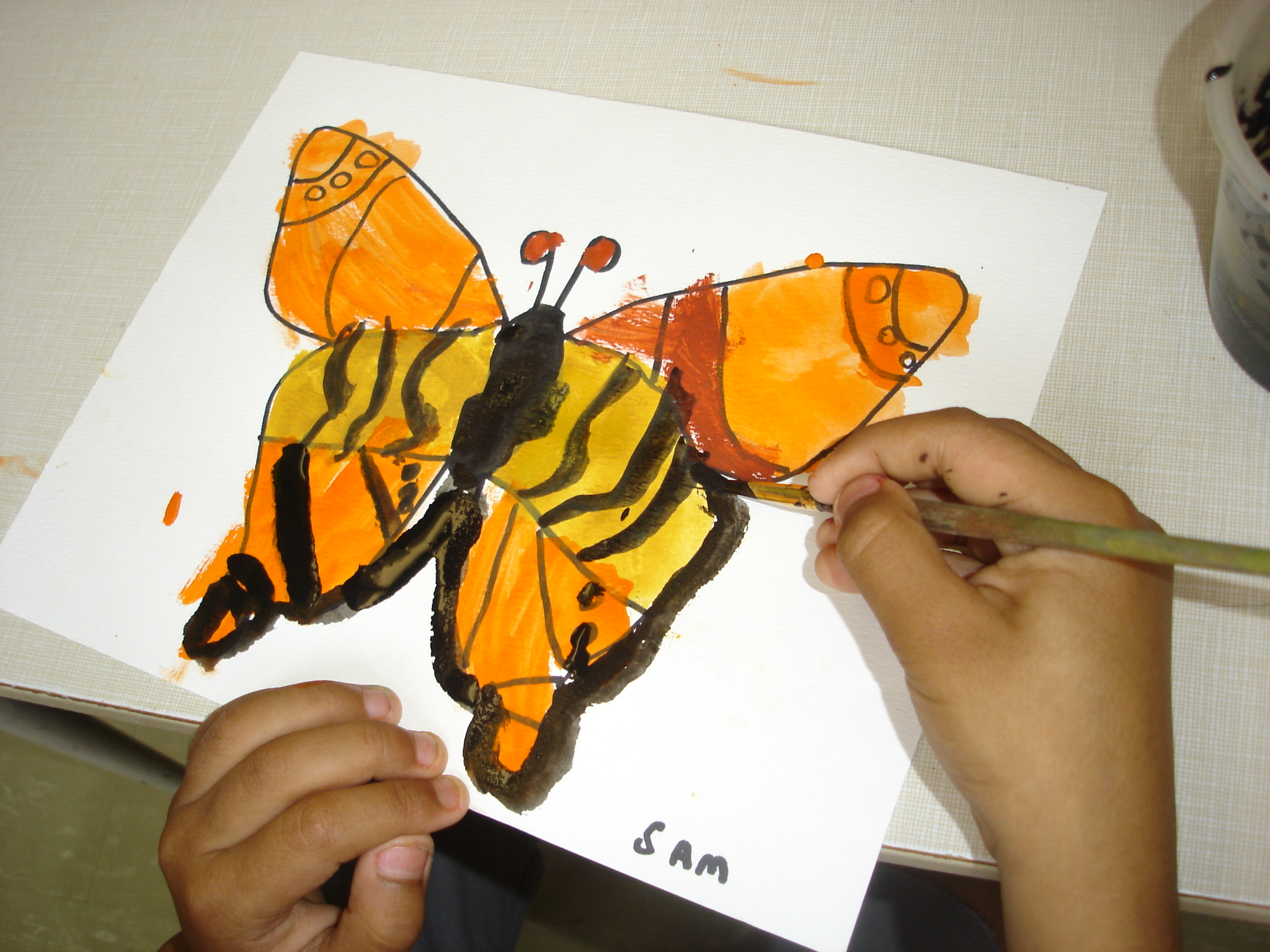 the butterfly inquiry the curious kindergarten