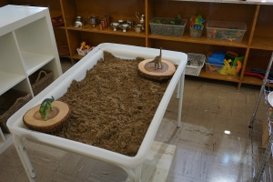 Sand Table. Only one sensory table has arrived, but I plan to make due with one by placing the lid on top of the sand and using a large rubbermaid container on top for a water table.