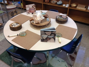 """Science and Nature centre. Currently set up with rocks and shells from the beach (""""What do you notice?""""). I will also be providing the children with jars of water and small brushes for them to experiment with how the water affects the look of the rocks and shells."""