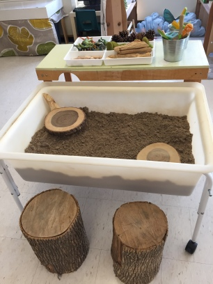 Sand Centre with natural loose parts and dinosaurs.